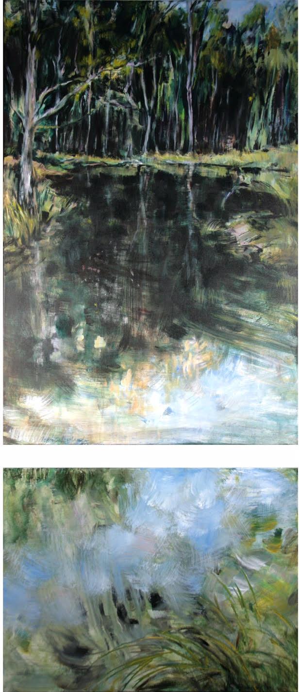 fran son's pond